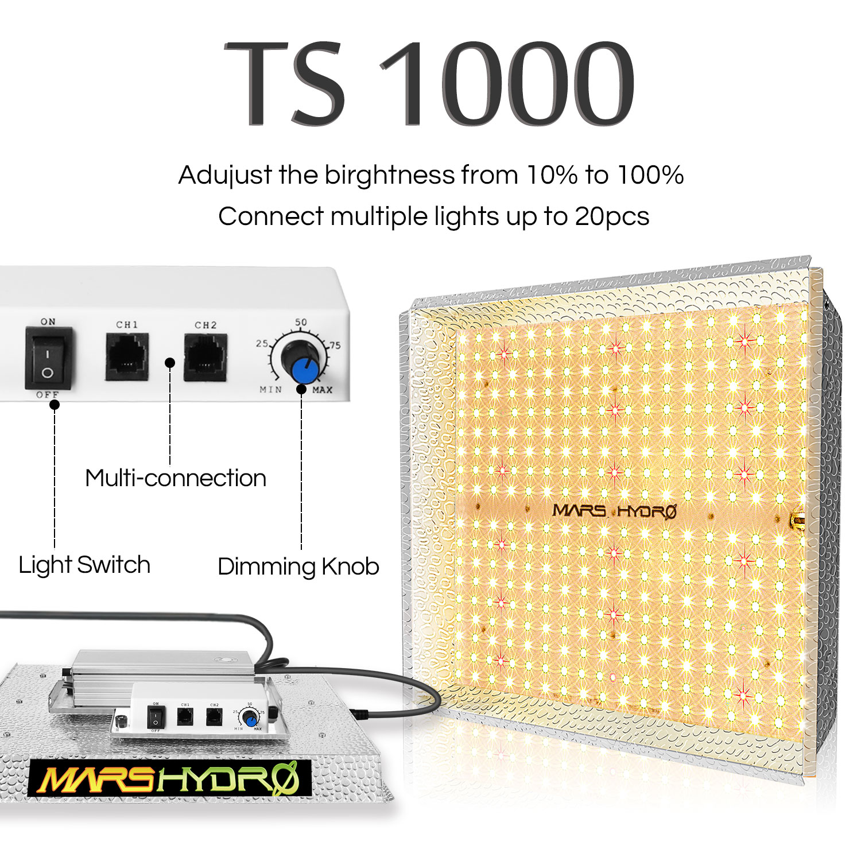 [Image: TS1000-01.jpg]